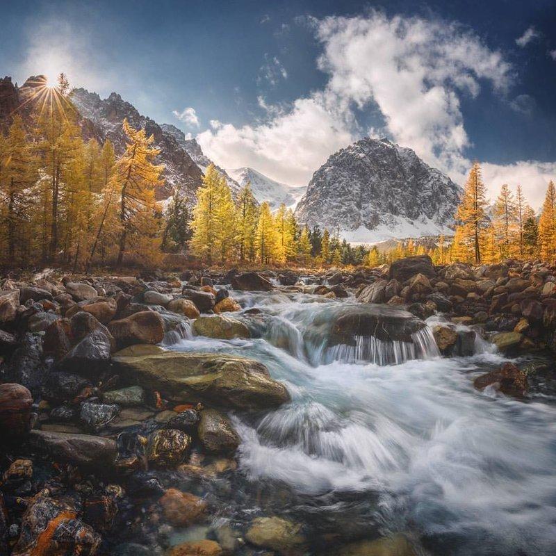 Золотая долина Алтая, Алтайский край горы, леса, природа, природа России, российская природа, россия