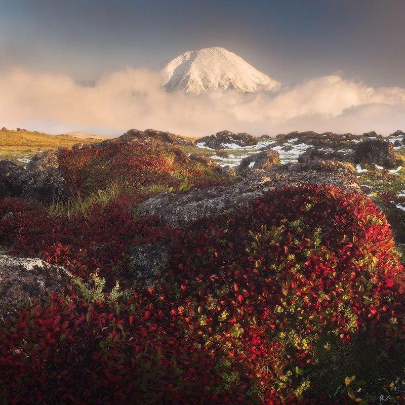 Камчатка горы, леса, природа, природа России, российская природа, россия