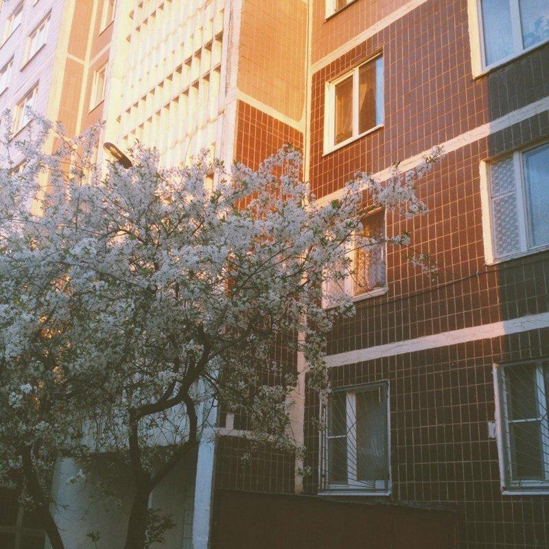 Серпухов, Московская область дома, панельки, советские панельки, фотография, эстетика