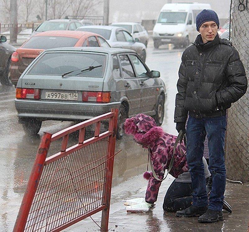 3. В Волгограде мужчина выгуливает женщину на поводке идиоты, на поводке, питомцы, фото, фрики