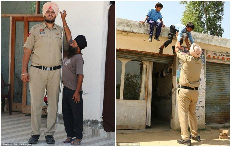 В Индии живет самый высокий в мире полицейский высокие люди, высокие люди мира, высокий рост, индия, полицейский, полиция, рекорды, фото