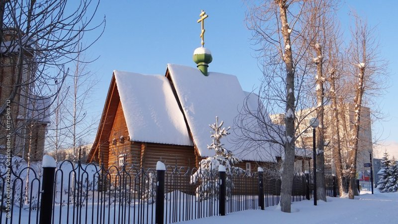 Сыктывкарская церковь распродаёт свой зоопарк ynews, деньги, животные, интересное, продажа, фото, церковь