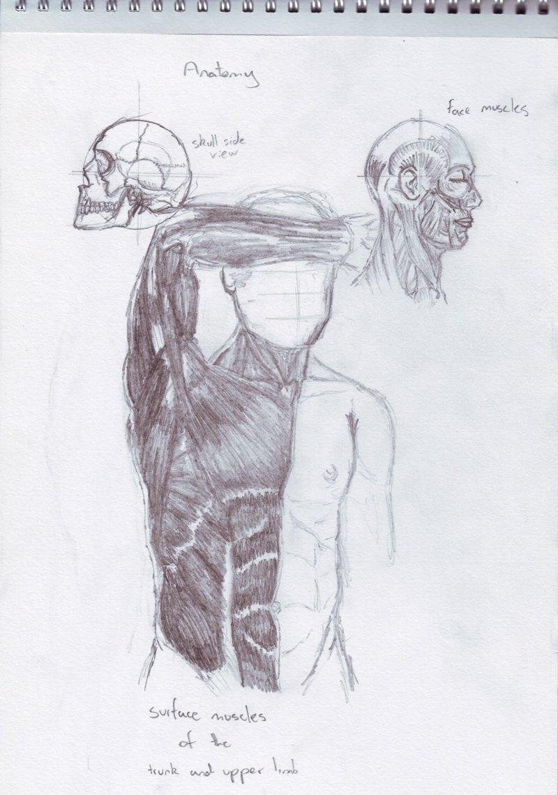 Эволюция рисунка: художник продемонстрировал свои работы - от корявых зарисовок до сюрреализма Imgur, Reddit, мастерство, рисунок, художник