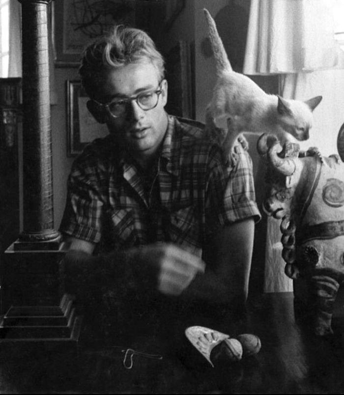 6. Джеймс Дин и его кот Маркус, Нью-Йорк, 1954 г. Instagram, звезды, знаменитости, знаменитости в молодости, известные, редкие фото, селебрити, старые фото