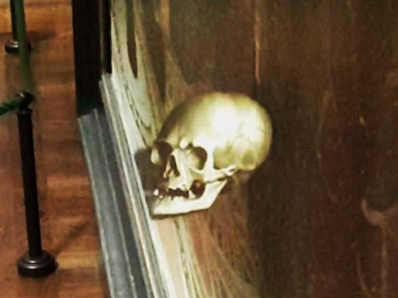 Но если на это нечто взглянуть под совершенно другим углом, то можно обнаружить, что этим предметом является человеческий череп, который был нарисован с помощью такого эффекта, как «анаморфическая перспектива» загадка, кадр, обман зрения, оптическая иллюзия, фото