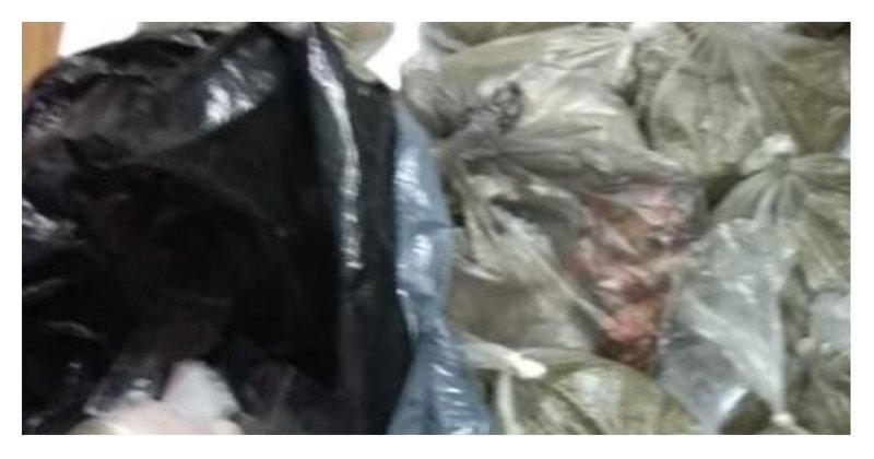 Из-за скандала с наркотиками в Ростове уволили целое отделение полиции ynews, наркотики, полиция, преступление, ростов-на-дону