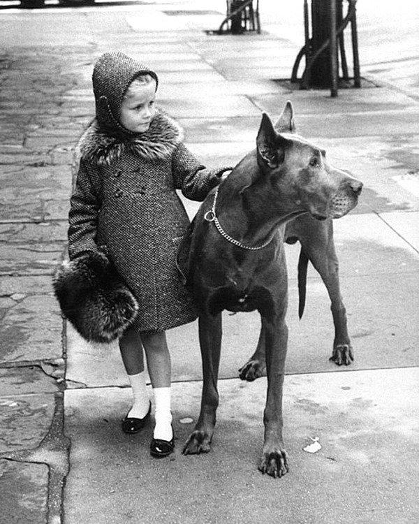 Прогулка. Nina Leen - коллекция изображений LIFE. 1957 год. Весь Мир в объективе, ретро, фотографии