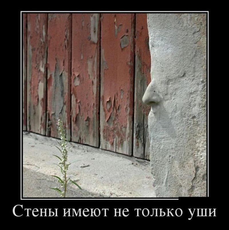 Стены имеют не только уши демотиватор, демотиваторы, жизненно, картинки, подборка, прикол, смех, юмор