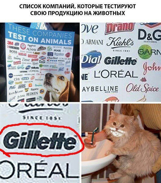 Gillette!  метро, пятница, смех, юмор