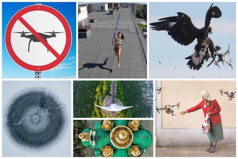 А вы знали, что drone — это трутень, бездельник? И все-таки они оказались не такими уж и бездельниками Фабрика идей, дроны, интересное, помощники, приспособили