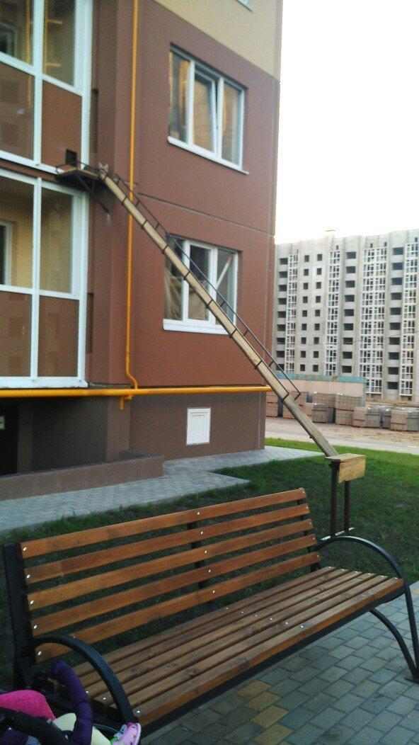 В Воронеже неравнодушные люди соорудили для кота отдельную лесенку ynews, Любовь, воронеж, животные, интересное, коты, лестница