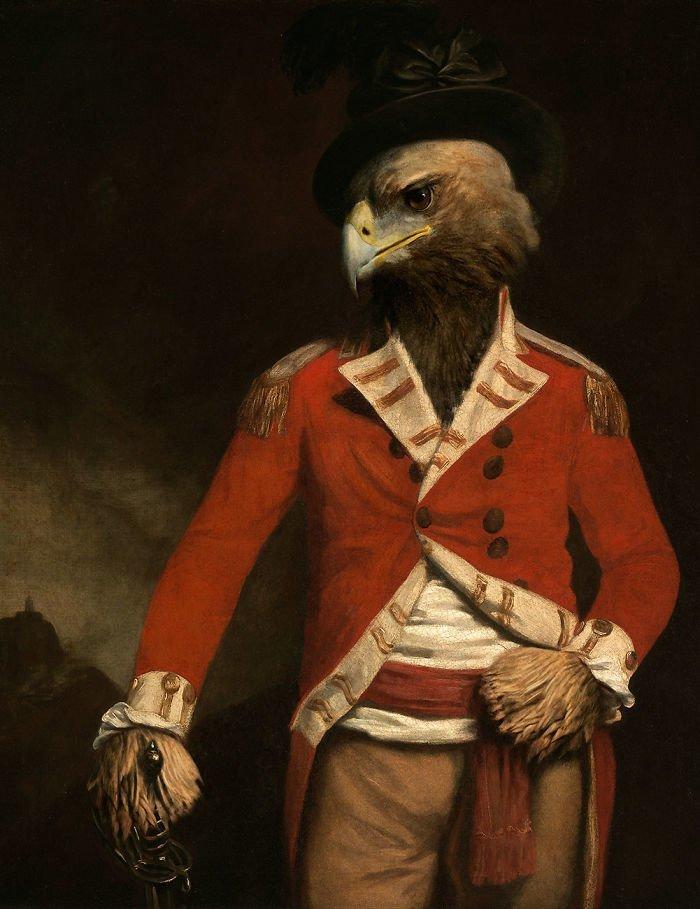 13. Полковник Орел возрождение, животные, необычное, портрет, портреты, портреты животных, проект, художник