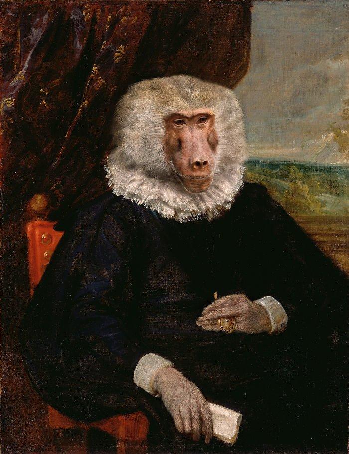 5. Сеньор Бабуин возрождение, животные, необычное, портрет, портреты, портреты животных, проект, художник