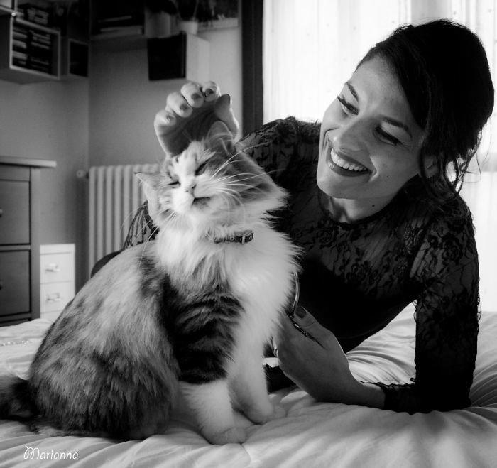 9. довольные мордашки, животные и люди, коты, кошаки, кошки, счастье, удовольствие, фотограф
