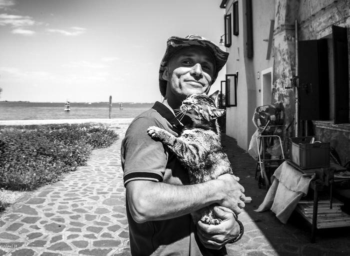 2. довольные мордашки, животные и люди, коты, кошаки, кошки, счастье, удовольствие, фотограф