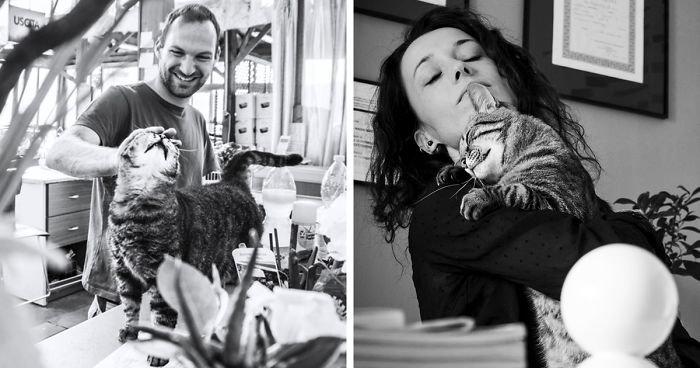 """Профессиональный котограф: """"Кошки умеют улыбаться"""" довольные мордашки, животные и люди, коты, кошаки, кошки, счастье, удовольствие, фотограф"""