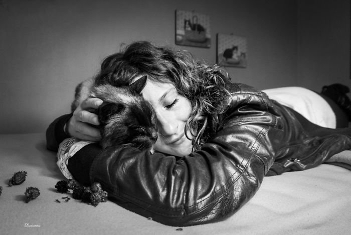 11. довольные мордашки, животные и люди, коты, кошаки, кошки, счастье, удовольствие, фотограф