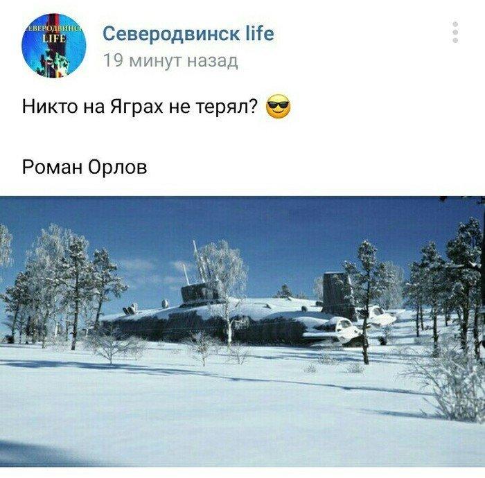 Идёшь по лесу, как вдруг... Потом вспоминаешь, что ты живёшь в России и идёшь спокойно дальше вещи, клад, находка, неожиданно, потерянные вещи, прикол, юмор