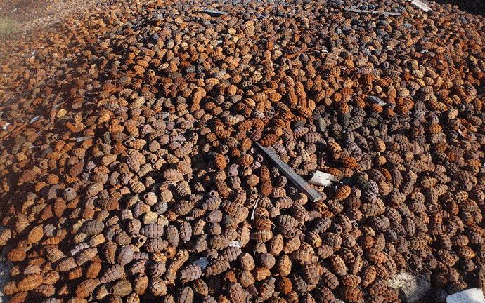 Нынче хороший урожай гранатов в этом году в России. Или всё же гранат? вещи, клад, находка, неожиданно, потерянные вещи, прикол, юмор
