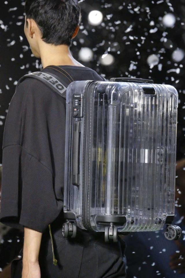 Чемодан-рюкзак день, животные, кадр, люди, мир, снимок, фото, фотоподборка