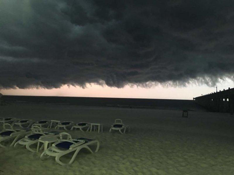 Тучи над пляжем день, животные, кадр, люди, мир, снимок, фото, фотоподборка