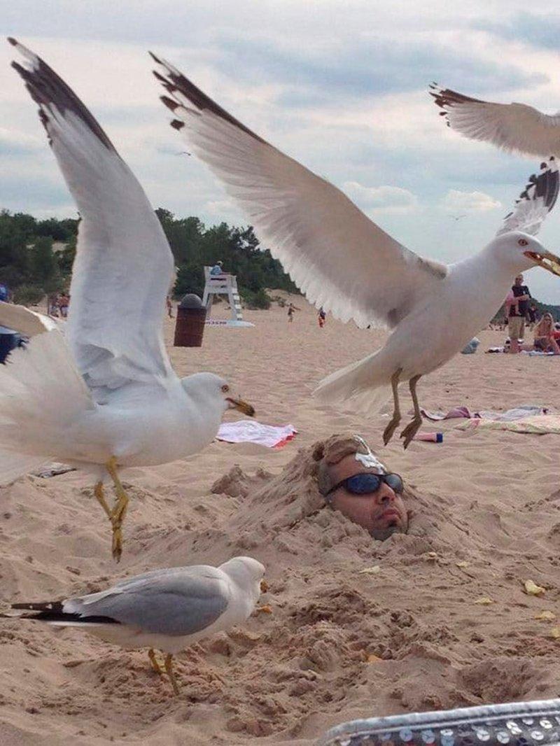 Особый вид наказания? жизнь, люди, отдыхающие, пляж, фейл, юмор