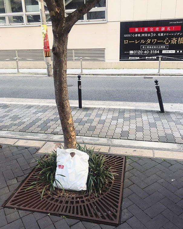 """11. """"Я забыл пакет с покупками на одной из улиц в Осаке. Когда вернулся поискать его, увидел, как кто-то положил его в целости под дерево""""  изобретение, инновация, мир, путешествие, факты, фото, япония"""
