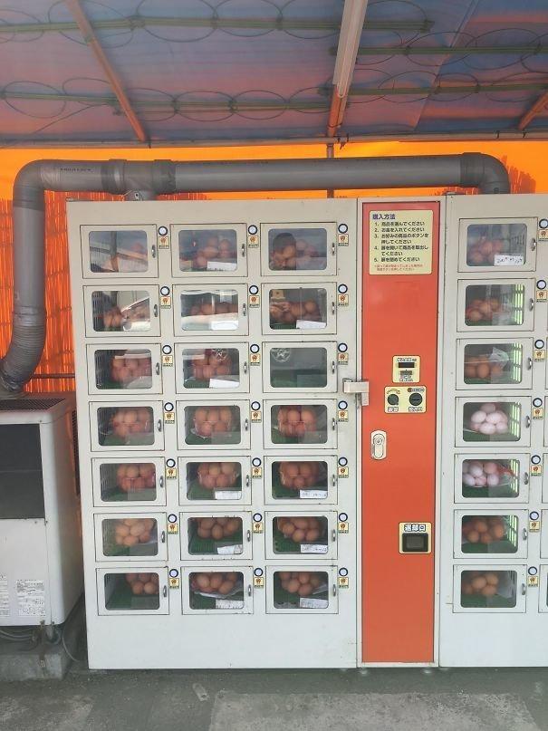 46. Торговый автомат со свежими яйцами  изобретение, инновация, мир, путешествие, факты, фото, япония