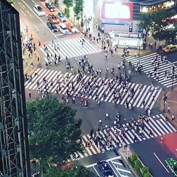 39. Диагональные пешеходные переходы  изобретение, инновация, мир, путешествие, факты, фото, япония