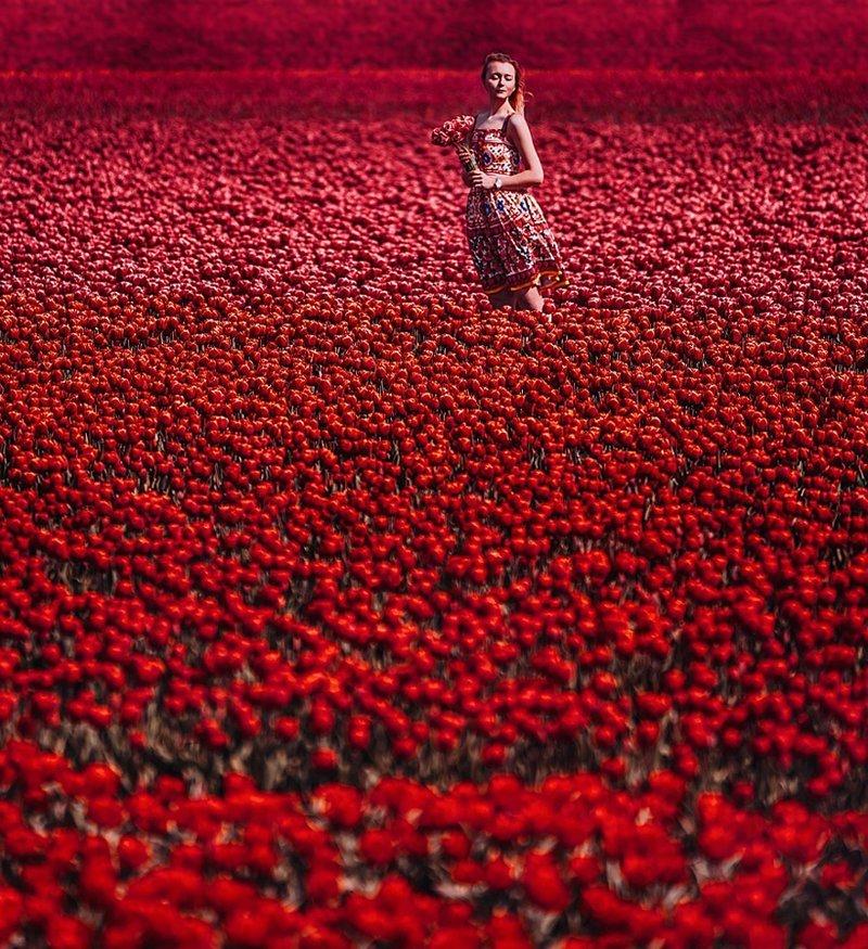 15. Лиссе, Южная Голландия, тюльпановое поле вау, девушки в платьях, красивые  места, красивые девушки, красота мира, модели, платья, фотопроект