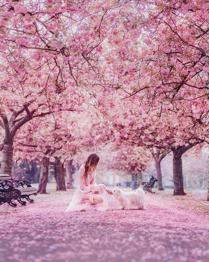 10. Гринвичский парк, Лондон вау, девушки в платьях, красивые  места, красивые девушки, красота мира, модели, платья, фотопроект