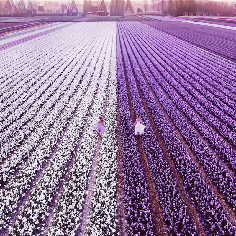 18. Нидерланды, цветочные поля вау, девушки в платьях, красивые  места, красивые девушки, красота мира, модели, платья, фотопроект