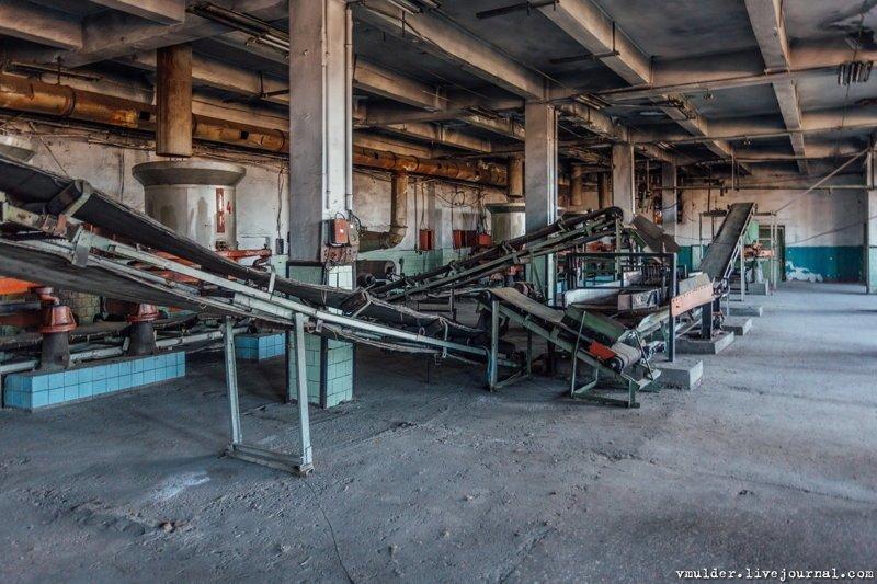Заброшенная чайная фабрика. Где делался грузинский чай 2 и 3 сорта путешаствия, факты, фото