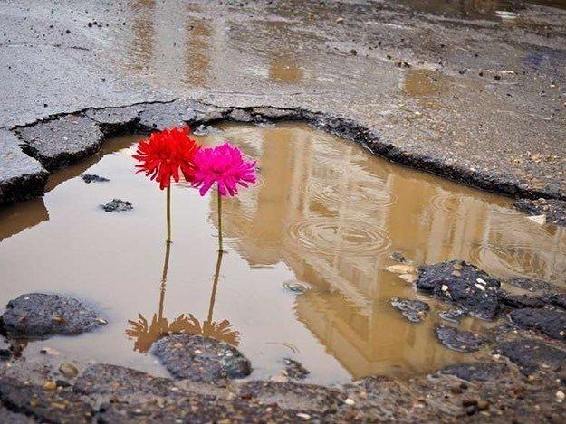 Наши ямы - самые ямистые ямы в мире всячина, дороги, жизнь, провалы, юмор, ямы