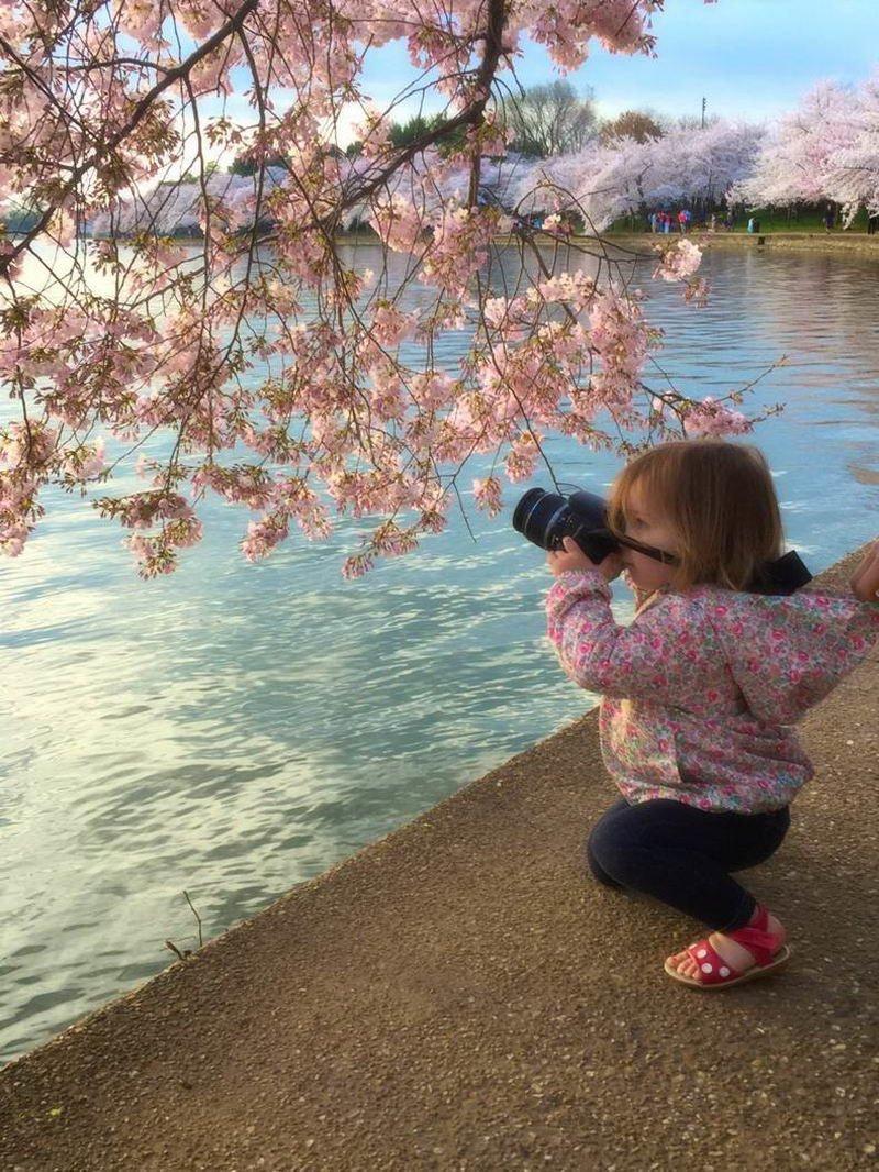 Юный фотограф день, животные, кадр, люди, мир, снимок, фото, фотоподборка