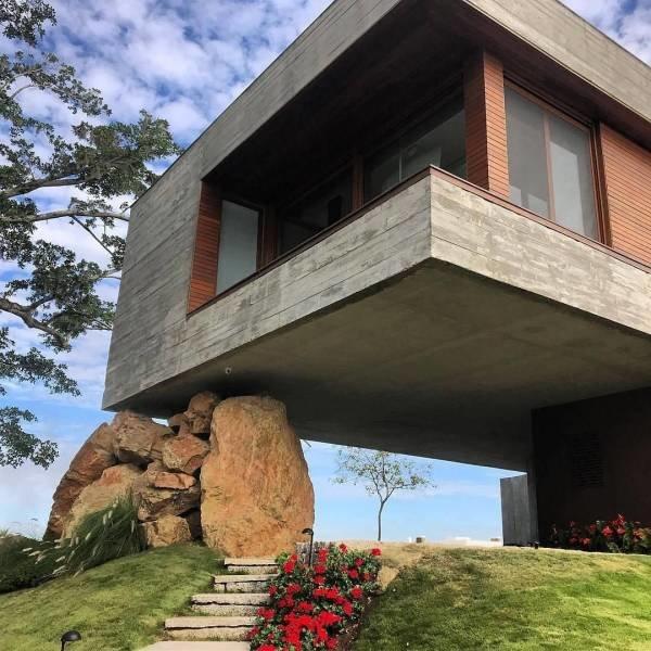 Архитектурная задумка день, животные, кадр, люди, мир, снимок, фото, фотоподборка