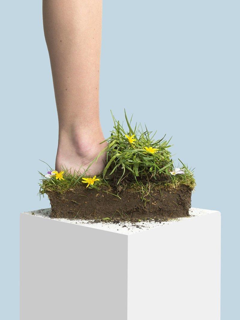 3. Органика art, дизайн, забавно, идеи, концепции, обувь, приколы, фотограф