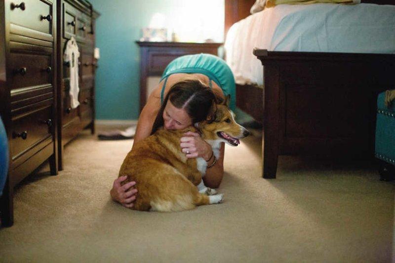 Собака сделала все, чтобы помочь хозяйке в родах друг человека, животные, мило, роды, собаки, собаки и хозяева, трогательно, четвероногий помощник