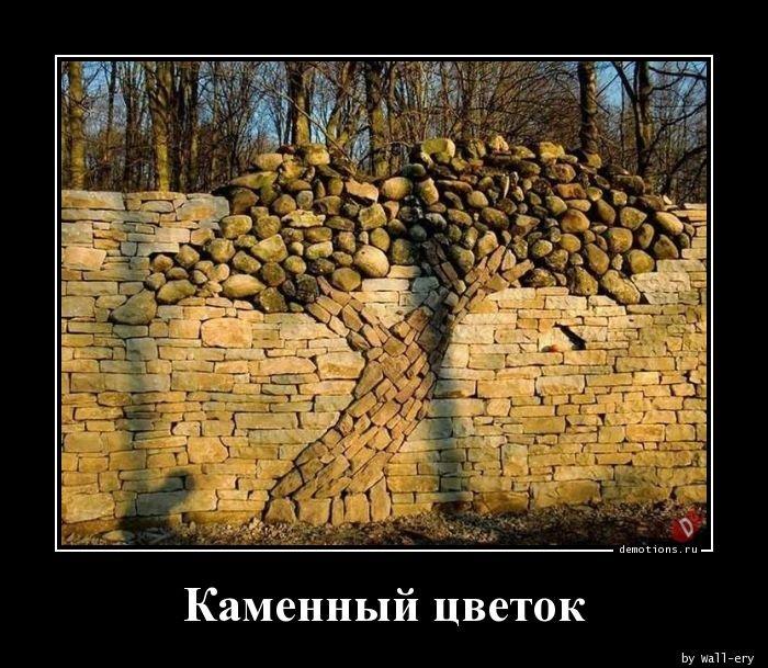 Каменный цветок демотиватор, демотиваторы, жизненно, картинки, подборка, прикол, смех, юмор