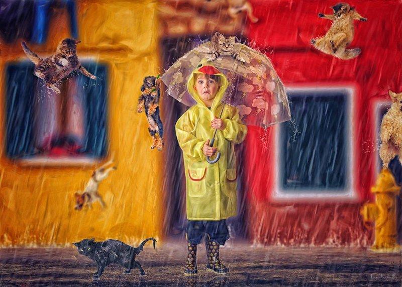 4. Raining Cats And Dogs - Поливает кошками и собаками (Дождь льет как из ведра) английские, выражения, забавные картинки, идиомы, иллюстрации, перевод на русский, познавательно, фотограф