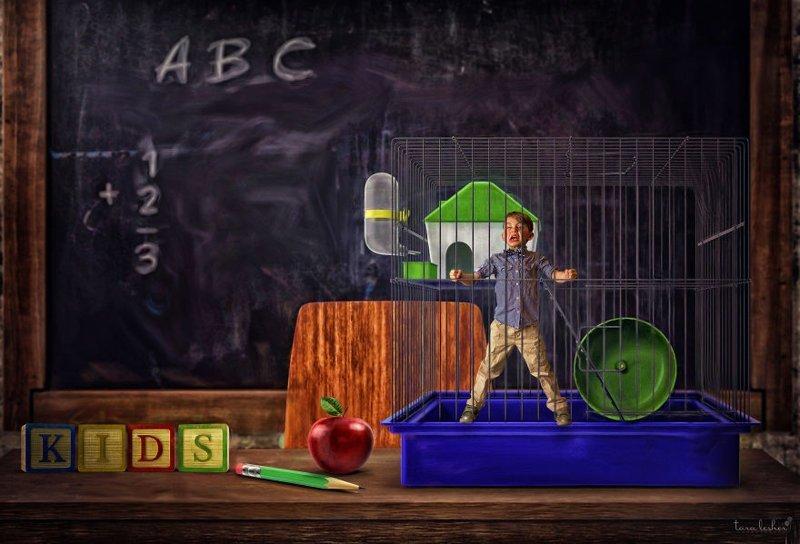 2. Teachers Pet - Учительский зверёк (Любимчик) английские, выражения, забавные картинки, идиомы, иллюстрации, перевод на русский, познавательно, фотограф