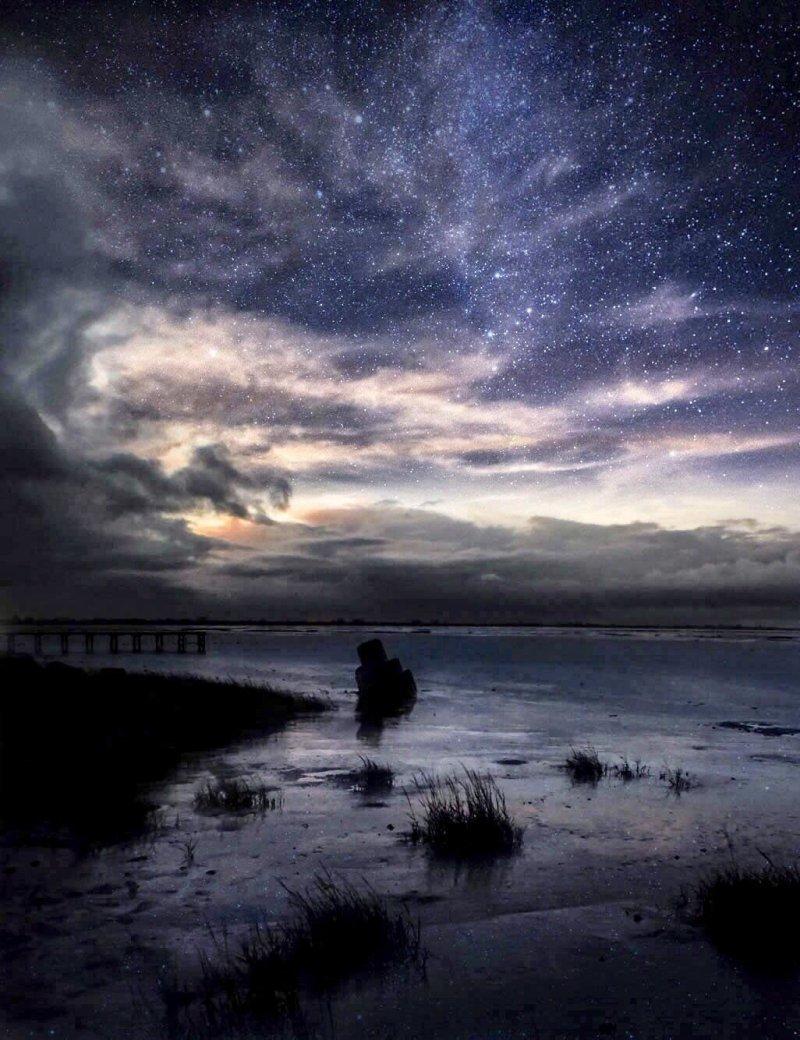 Ваттовое море, Дангаст, Германия день, животные, кадр, люди, мир, снимок, фото, фотоподборка