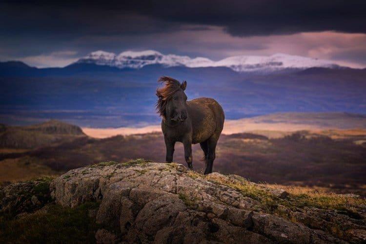 Исландия - страна неземных пейзажей исландия, красота, пейзажи, природа, путешествия, туризм, фотография, фоторепортаж