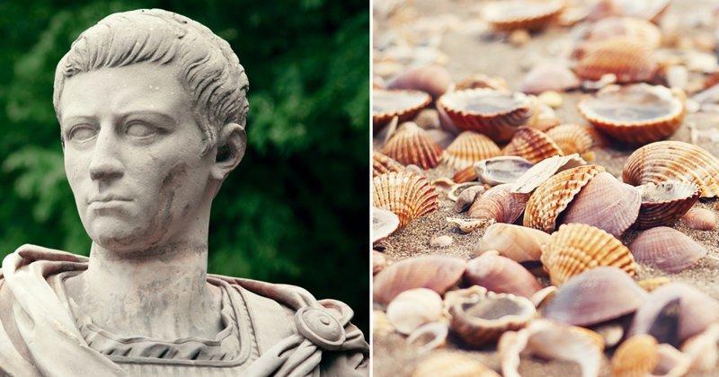 Десятка фактов, подтверждающих безумие Калигулы Калигула, безумие, история, культ, лошадь, факты