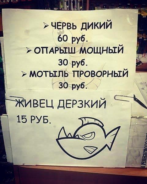 21. Виды наживы Особенности национальной рыбалки, видео, клюет, рыба, рыбалка, фото, юмор