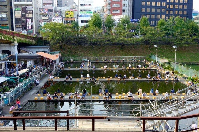 5. В Японии есть специальные организации, которые устраивают туристическую рыбалку: без улова никто не уйдет Особенности национальной рыбалки, видео, клюет, рыба, рыбалка, фото, юмор