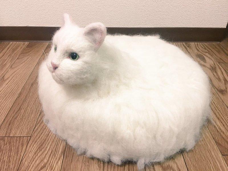 Его зовут Барум, и это котёнок, которому ещё нет и года видео, изобретения, кот, коты, пылесос, своими руками, япония