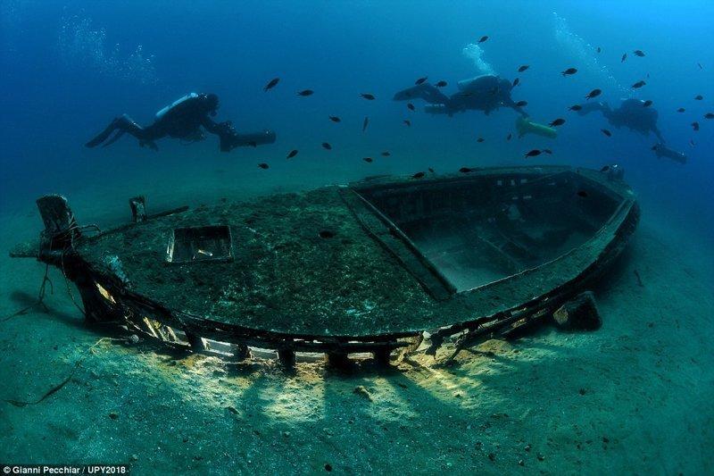 Фотограф Джанни Печчиар конкурс, красиво, лучшее, подборка, подводные снимки, подводные фото, фото, фотографы