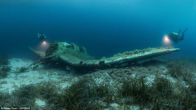 Затопленный самолет у берегов Хорватии, Пекка Туури конкурс, красиво, лучшее, подборка, подводные снимки, подводные фото, фото, фотографы
