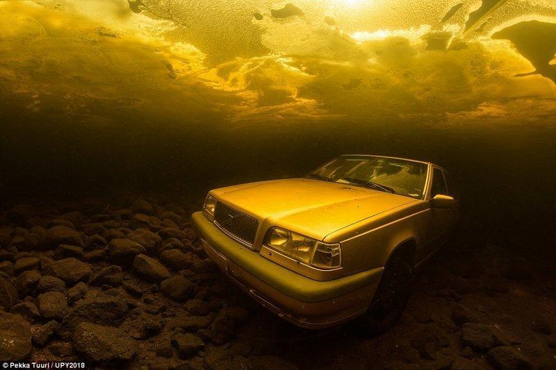 На дне озера Сайма в Финляндии, Пекка Туури конкурс, красиво, лучшее, подборка, подводные снимки, подводные фото, фото, фотографы